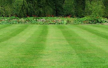 professional Powys grass cutting services