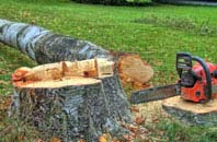 free Powys tree felling quotes