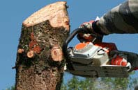 free Powys tree removal quotes