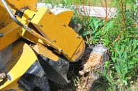 Powys tree stump grinding services